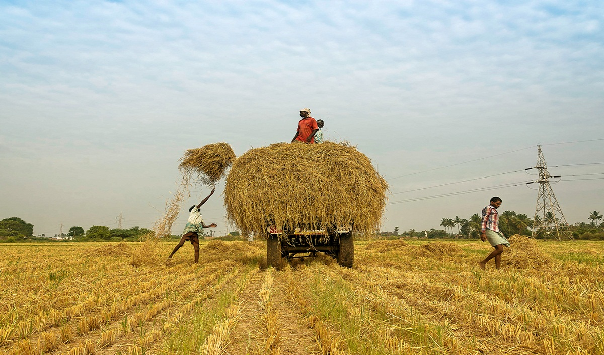 E-Commerce in Agriculture: Farmers to Sell Fresh Produce Directly to Buyers