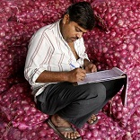 Govt puts stock limits on onion & potato to check prices
