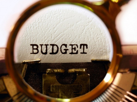 Budget Expectations 2015-16: Expert views