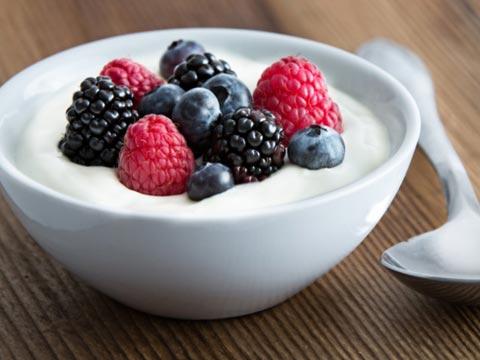 Yogurt Treat!