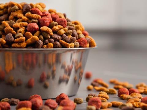 How New Pet Food Is Changing The Retail Shelves?