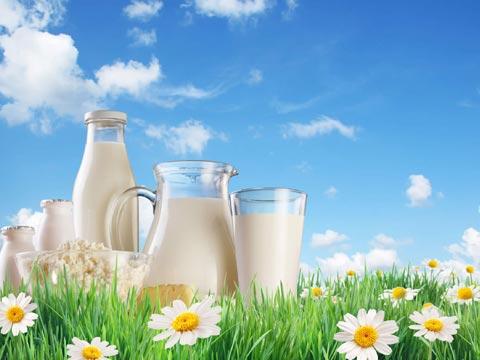Milk retail biz