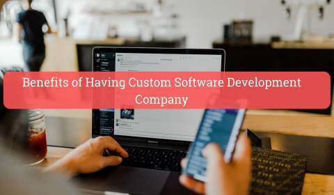 Benefits of Having a Custom Software Development Company