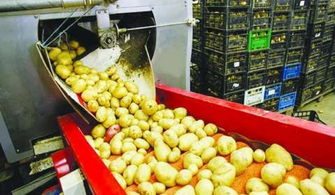 Agri Tech Startup Our Food Plans 20K Micro Food Processing Units in Telangana