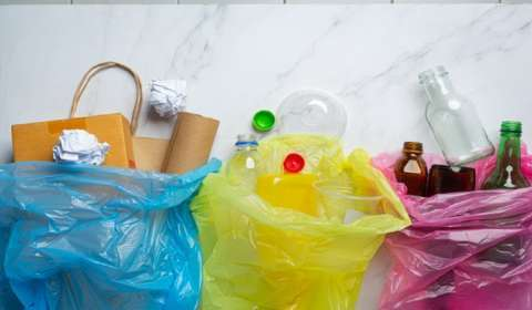 Top 5 Start-ups with Innovative Waste Management and Processing Solutions