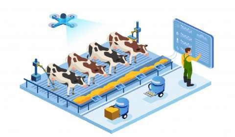 How Digitalization Can Help Improve Dairy Farming