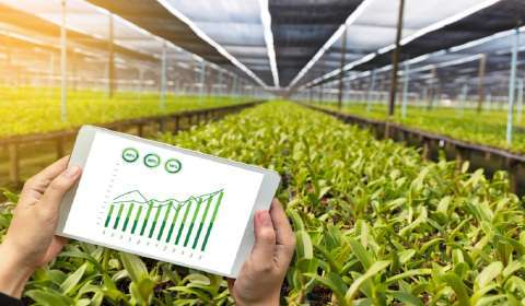 Agritech Startup Fyllo to Foray into New Markets with Latest Funds