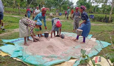 Kamini Tea Estate Continues to Thrive Amidst the Pandemic