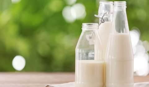 In Moo'd for Growth: Five Milktech Brands Spearheading Milk Delivery Segment in India