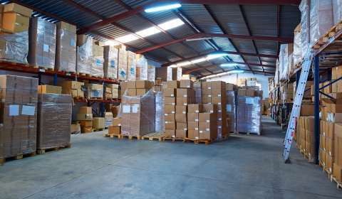 Why Logistics Management Platforms Witness a Surge in Demand During the Festive Season
