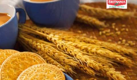 Contract workers go on strike at Britannia Industries' Delhi factory