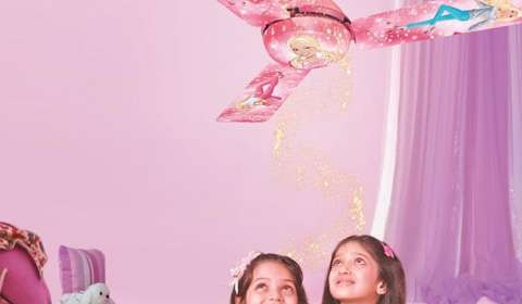 Usha Intl eyes 22% share in branded fans market by FY16