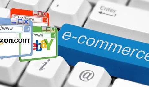 How  Indian e-retailers  survived 2016..
