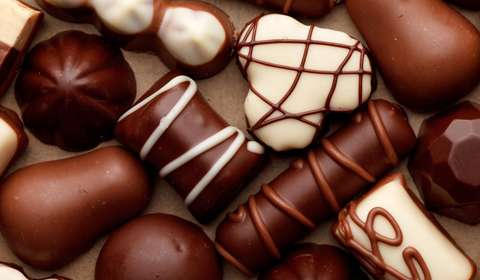 Chocolate business,retail business,