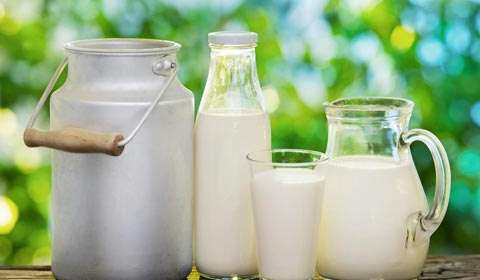 How milk-subscription based businesses are exploding with growth?