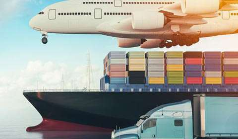 Unlock the Potential of the Personalized Supply Chain