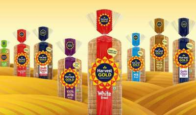 Harvest Gold Introduces Fresh Visual Identity to Strengthen Brand Positioning