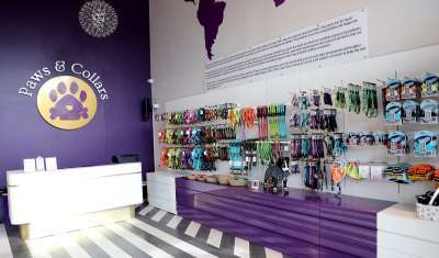 Paws & Collars Unveils First Ever Pet Mall in India