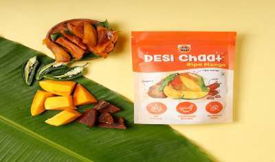 Go Desi Adds Two New Products to Desi Chaat Range