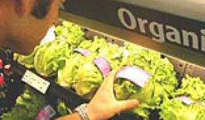 Healthy food or pricey habit