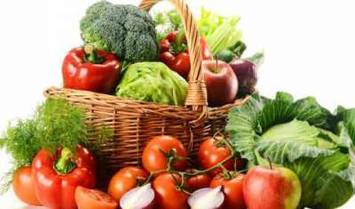 Food processing ind major driver in India's Growth