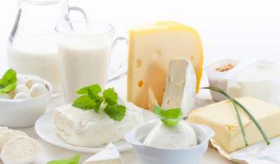 Dlecta Foods introduces premium dairy gourmet