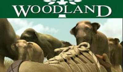 Will dressing up the eyes bring more customers to Woodland?