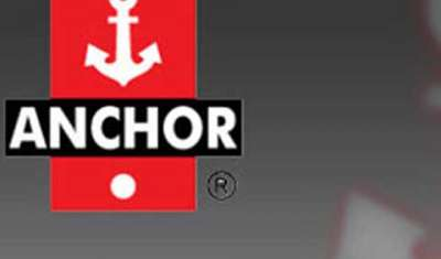 Anchor Electricals aims a revenue of Rs 5K by 2020