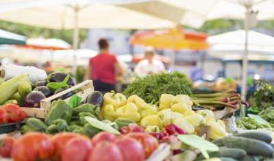 Organic Food Market,Organic,Food Retail,food,