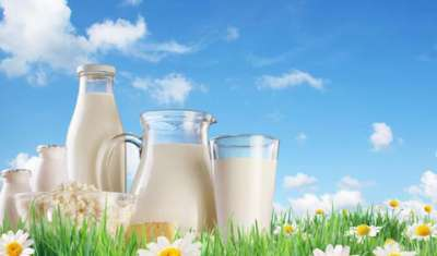 Milk retail biz